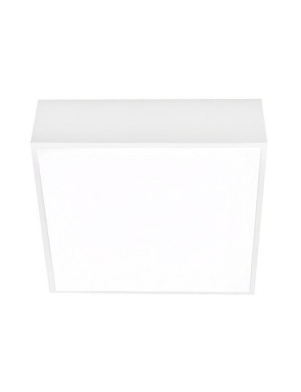 Plafon FALCO 12 3000K/4000K biała lub czarna oprawa natynkowa Azzardo